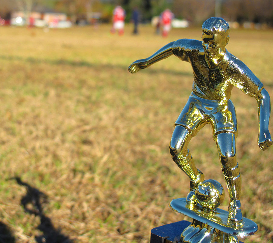 Soccer trophy on grass